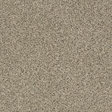Shaw Floors SFA Iconic Element Sesame Seed 00102_EA708