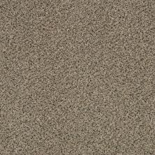 Shaw Floors Foundations Iconic Element Raffia 00104_EA708