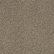 Shaw Floors SFA Iconic Element Raffia 00104_EA708