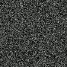 Shaw Floors SFA Iconic Element Earthy Emerald 00300_EA708