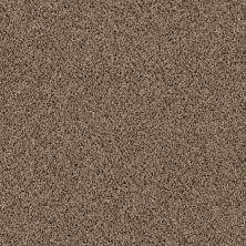Shaw Floors SFA Iconic Element Ponytail 00700_EA708