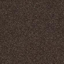 Shaw Floors SFA Iconic Element Buckeye 00703_EA708