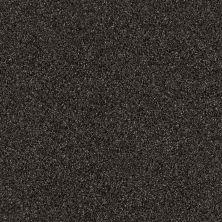 Shaw Floors SFA Iconic Element Riverbank 00704_EA708