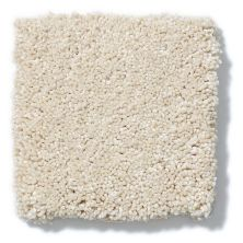 Shaw Floors Anso Colorwall Titanium Texture Parchment 00111_EA709