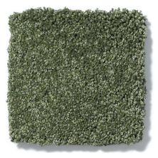 Shaw Floors Anso Colorwall Titanium Texture French Quarter 00338_EA709
