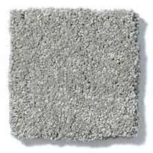 Shaw Floors Anso Colorwall Titanium Texture Elephant Gray 00534_EA709