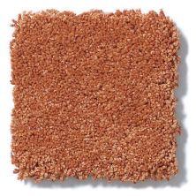 Shaw Floors Anso Colorwall Titanium Texture Passion Fruit 00631_EA709