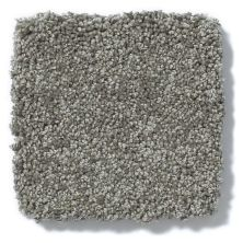 Shaw Floors Anso Colorwall Titanium Texture Venice Pier 00731_EA709