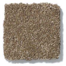 Shaw Floors Anso Colorwall Titanium Texture Latte 00760_EA709