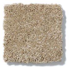 Shaw Floors Anso Colorwall Titanium Texture Beach House 00771_EA709