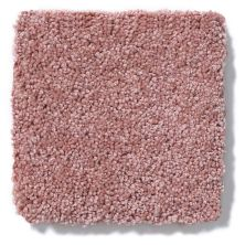 Shaw Floors Anso Colorwall Titanium Texture Azalea Bloom 00831_EA709