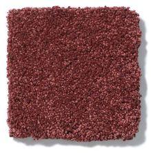 Shaw Floors Anso Colorwall Titanium Texture Grand Central 00833_EA709