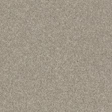 Shaw Floors SFA Virtual Gloss Morning Dew 00116_EA718