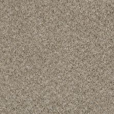 Shaw Floors Value Collections Nature Essence Net Echo 00101_EA723