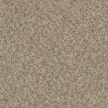 Shaw Floors Value Collections Nature Essence Net Moonlit Sand 00103_EA723