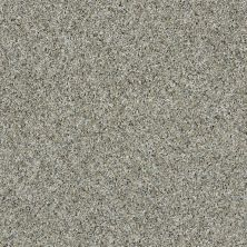 Shaw Floors Value Collections Nature Essence Net Aqua Sky 00500_EA723