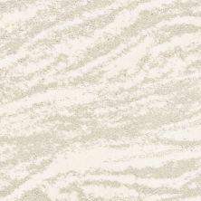 Shaw Floors Value Collections Velour Net Everest 00100_EA727