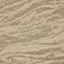 Shaw Floors Value Collections Velour Net Barley 00103_EA727