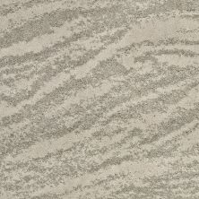Shaw Floors Value Collections Velour Net Chalet 00700_EA727