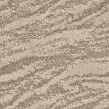 Shaw Floors Value Collections Velour Net Naturally 00701_EA727