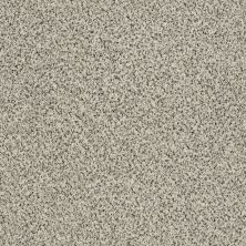 Shaw Floors Value Collections Iconic Element Net French Buff 00100_EA728