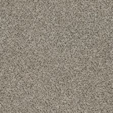 Shaw Floors Value Collections Iconic Element Net Adobe 00101_EA728