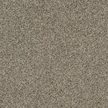 Shaw Floors Value Collections Iconic Element Net Granite 00103_EA728