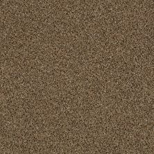 Shaw Floors Value Collections Iconic Element Net Scarecrow 00200_EA728