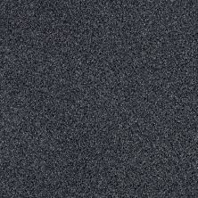 Shaw Floors Value Collections Iconic Element Net Mystic 00400_EA728