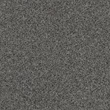 Shaw Floors Value Collections Iconic Element Net Stepping Stone 00502_EA728