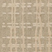 Shaw Floors Value Collections Fierce & Bold Net Soft Glow 00105_EA729