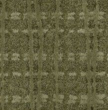 Shaw Floors Value Collections Fierce & Bold Net Clover 00300_EA729