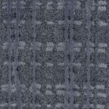 Shaw Floors Value Collections Fierce & Bold Net Evening Sky 00400_EA729