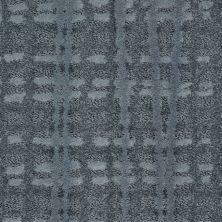 Shaw Floors Value Collections Fierce & Bold Net Fountain Spray 00402_EA729