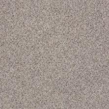 Shaw Floors Anso Colorwall Gold Texture Accents Quartz 00580_EA759