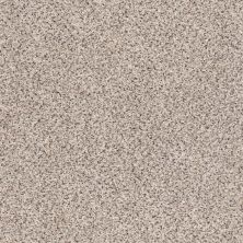 Shaw Floors Accents Sculptor GF00181_EA760