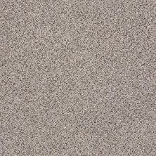 Shaw Floors Anso Colorwall Platinum Texture Accents Quartz 00580_EA760