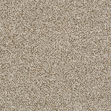 Shaw Floors 300sl 12′ Coastline 00121_EA763