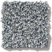 Shaw Floors 300sl 12′ Stone Washed 00421_EA763