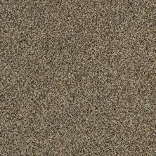 Shaw Floors 300sl 15′ Vintage Brass 00221_EA764