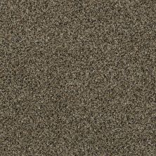 Shaw Floors 300sl 15′ Tree Swing 00724_EA764
