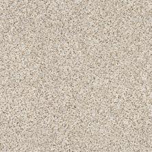 Shaw Floors SFA Strands Of Nature II Pixels 00170_EA769