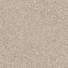 Shaw Floors SFA Strands Of Nature II Gentle Rain 00171_EA769