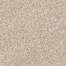 Shaw Floors SFA Strands Of Nature II Horizon 00172_EA769