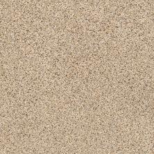 Shaw Floors SFA Strands Of Nature II Sand Castle 00174_EA769