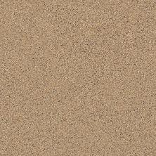 Shaw Floors SFA Strands Of Nature II Bridle Leather 00270_EA769