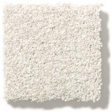 Shaw Floors SFA Find Your Comfort Tt I Clean Linen (t) 122T_EA817