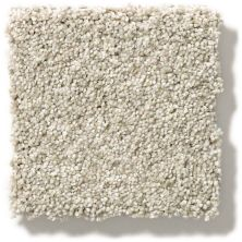 Shaw Floors SFA Find Your Comfort Tt I Sand Castle (t) 127T_EA817