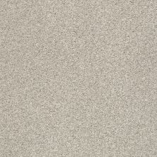 Shaw Floors SFA Find Your Comfort Tt I Shoreline Haze (t) 128T_EA817