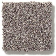 Shaw Floors SFA Find Your Comfort Tt I Lilac Field (t) 901T_EA817